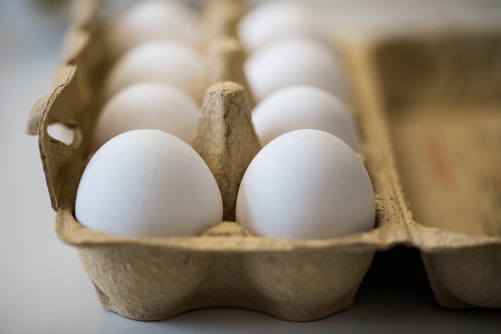 Bild zu Eier