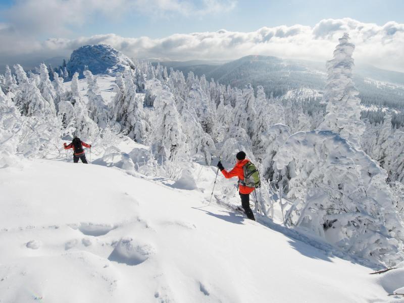 Bild zu Schnee auf dem Großen Arber