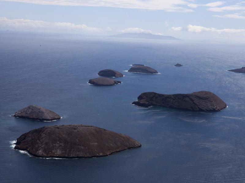 Bild zu Galapagos-Inseln