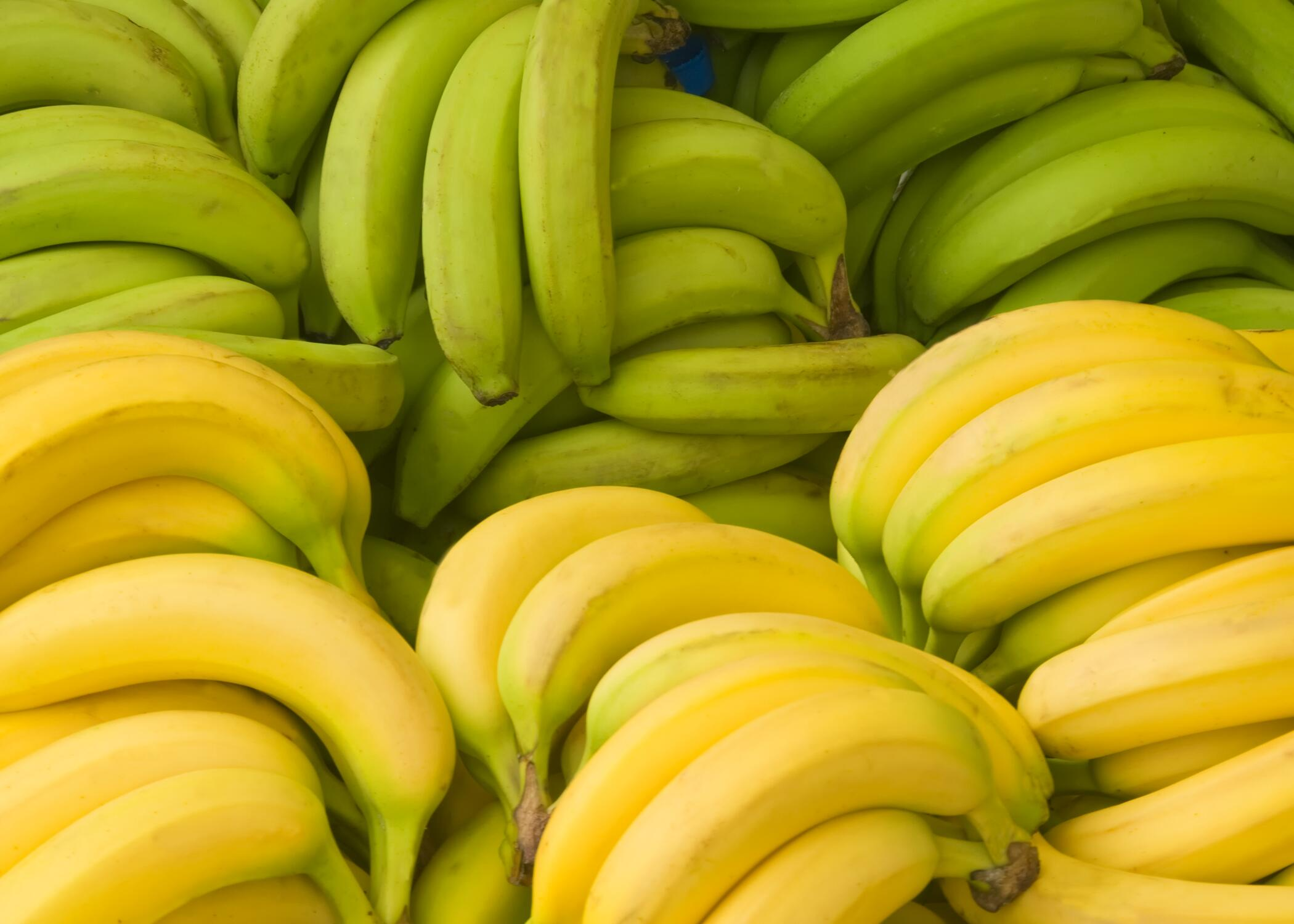Bild zu Kann ich grüne Bananen essen oder soll ich lieber warten bis sie gelb und reifer sind?