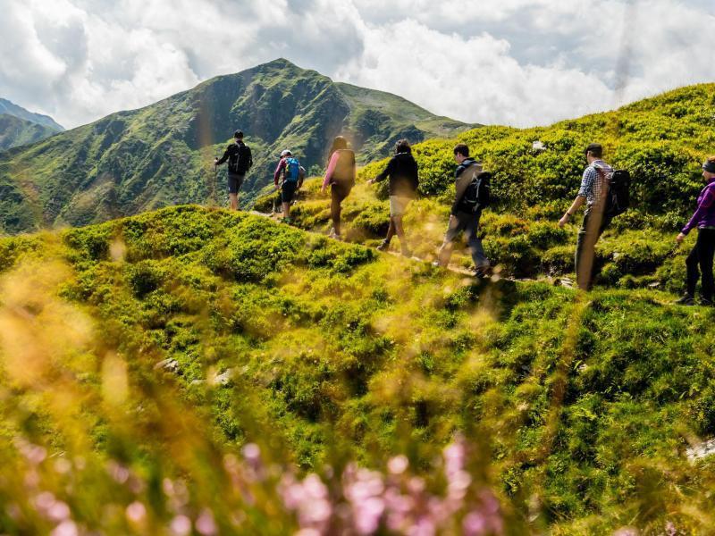 Bild zu Tagestour mit Wanderführer