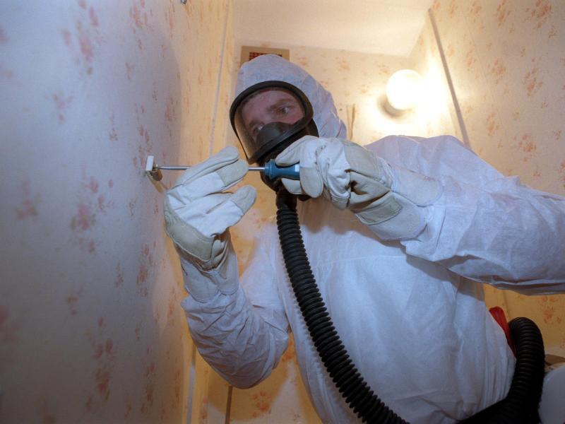 Bild zu Profis müssen Asbest entfernen