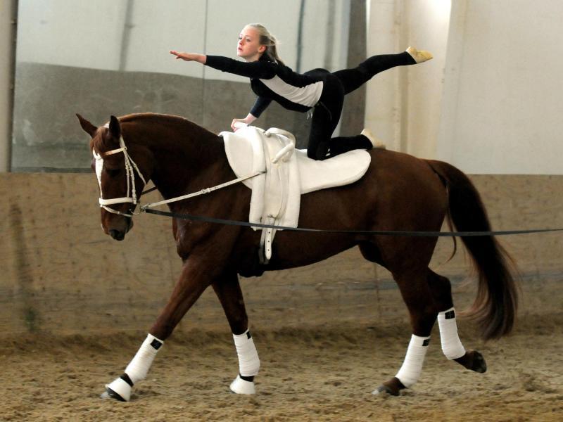 Turnen Auf Dem Pferd
