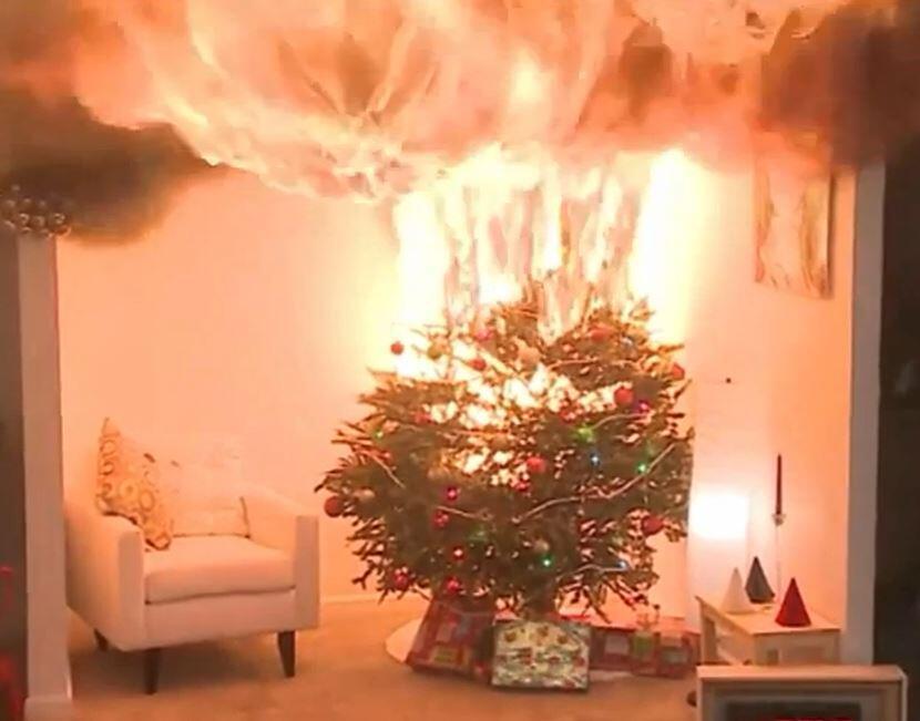 Bild zu Weihnachtsbaum, Brand, Gefahr