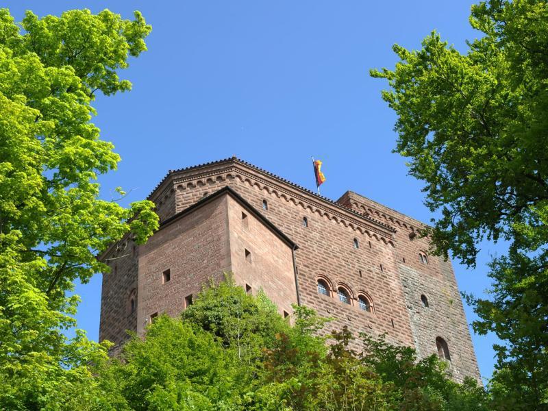 Bild zu Burg Trifels