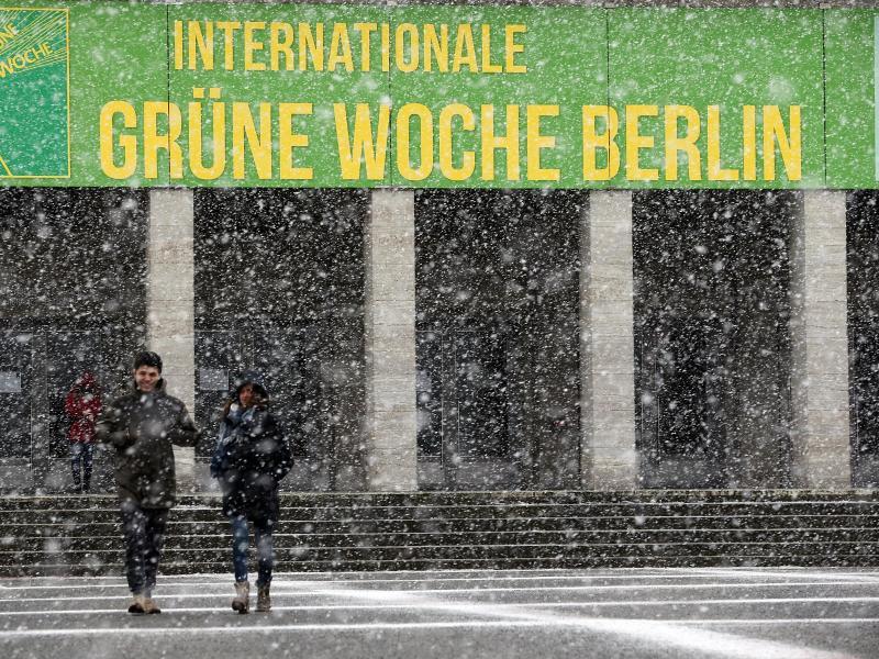 Bild zu Grüne Woche in Berlin