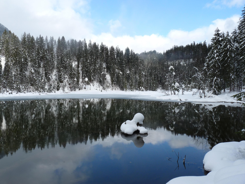 Bild zu See, Tirol