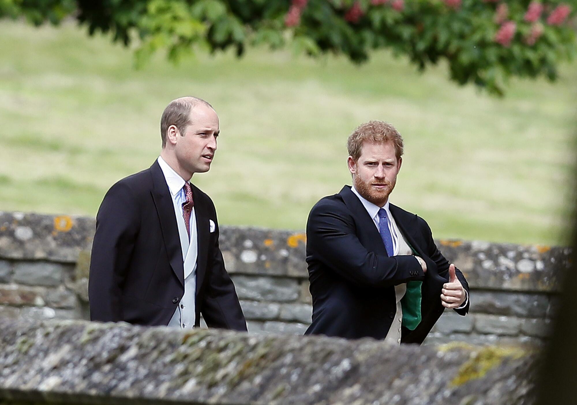 Bild zu Prinz Harry, Prinz William