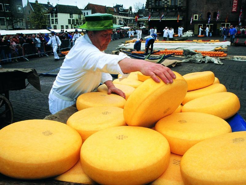 Bild zu Käsemarkt Alkmaar