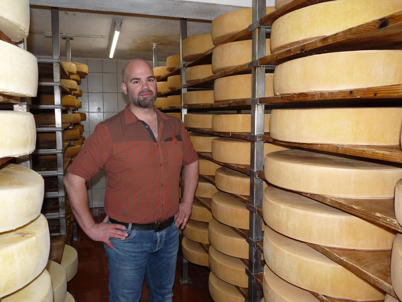 Bild zu Käseproduktion, Sojer, Tirol