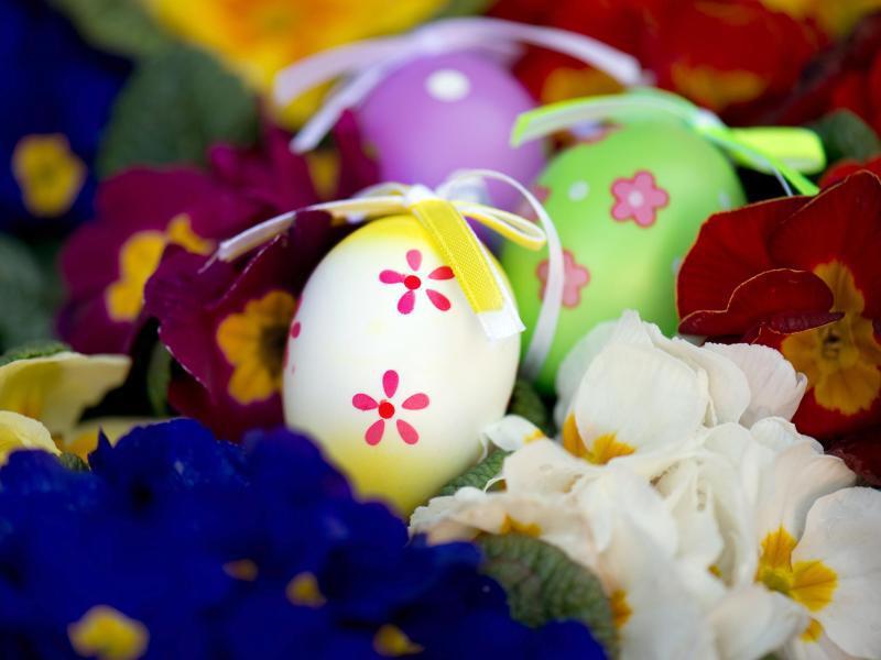 Bild zu Deko-Eier