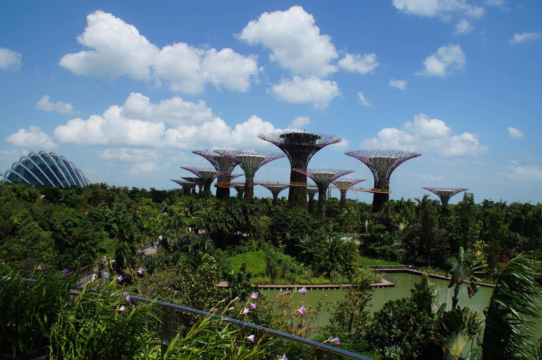 Bild zu Singapur Gardens