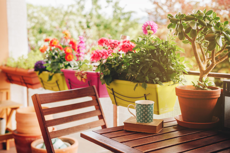 Bild zu Balkon, Terrasse, Inspo, Inspiration, Ideen, Deko, Pflanzen, Wohlfühlen, Oase
