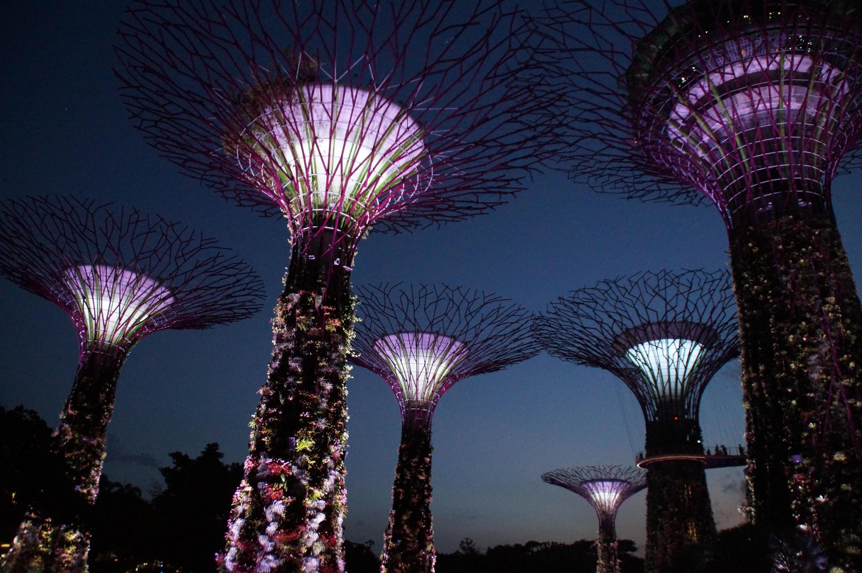 Bild zu Singapur
