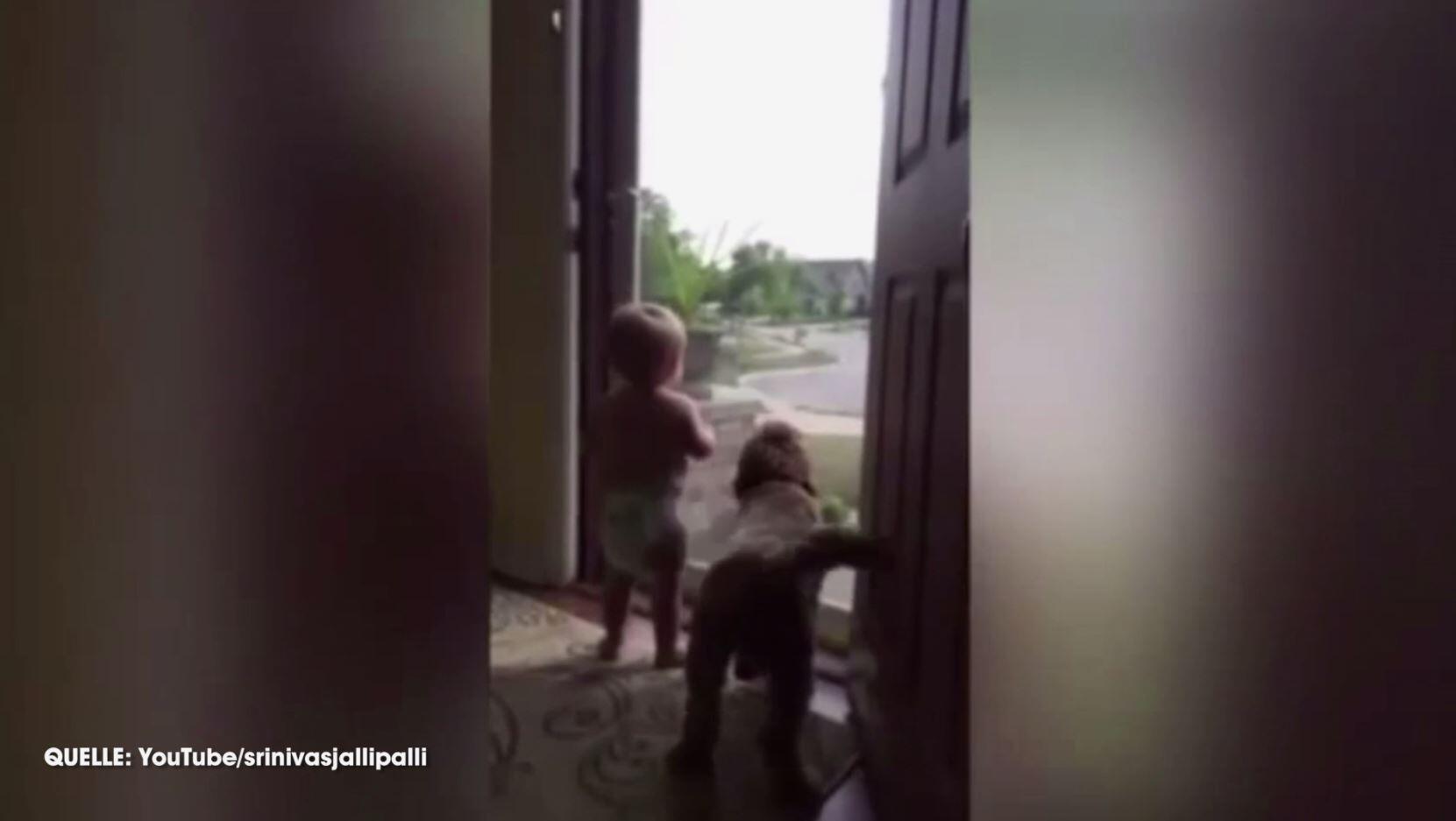 Bild zu Hund Kind