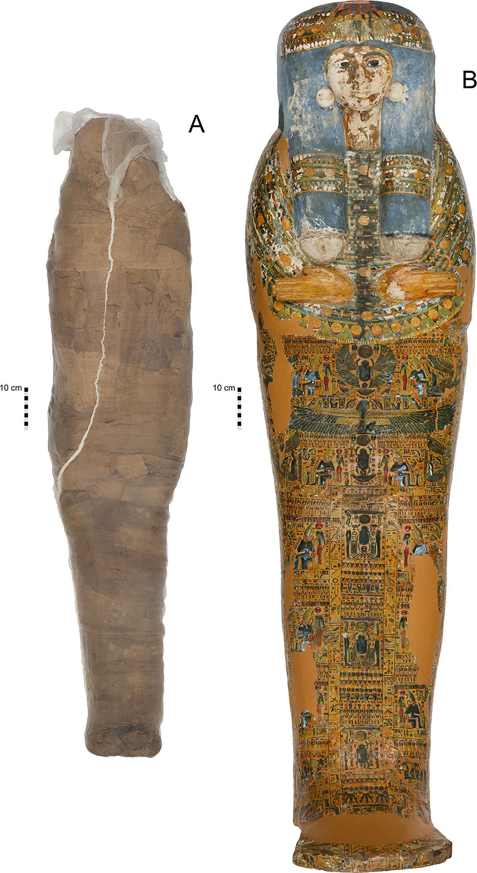 Bild zu Mumie