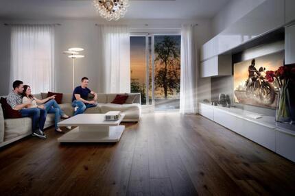 beamer oder fernseher wer macht das bessere heimkino. Black Bedroom Furniture Sets. Home Design Ideas