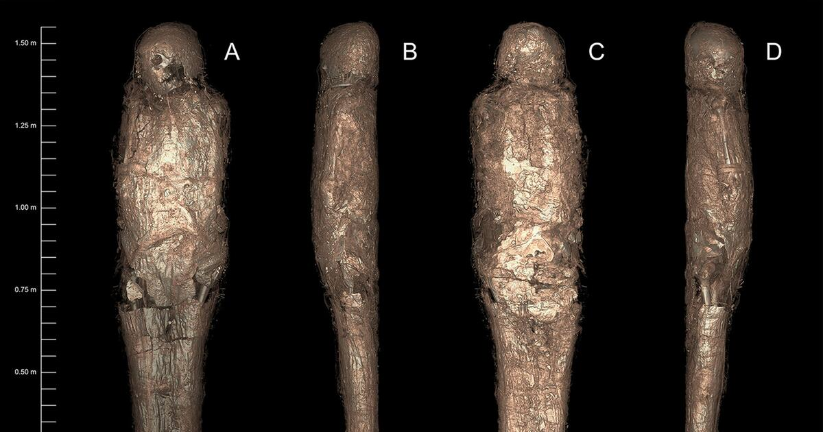 Ägypten: Archäologen finden uralte Mumie in seltsamem Kokon - WEB.DE News