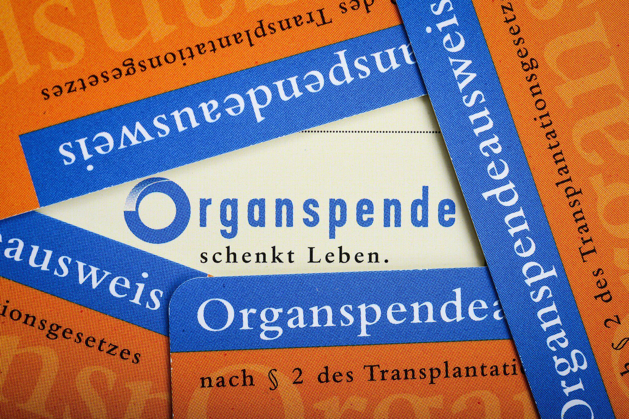 Bild zu Organspendeausweis