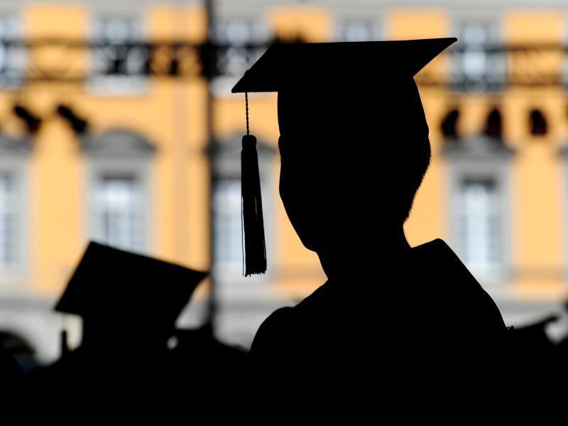 Bild zu Neue Bachelor-Möglichkeiten