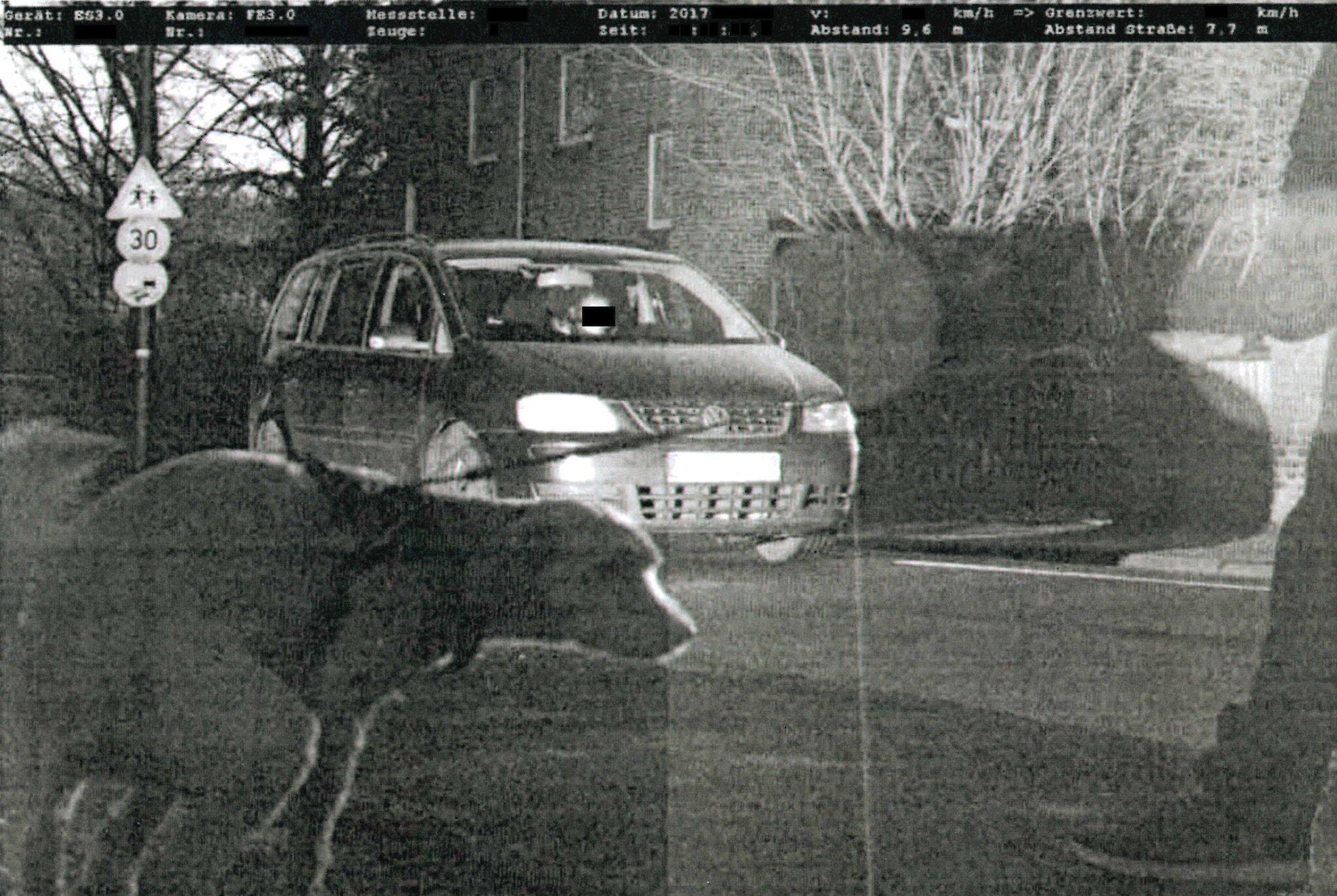 Bild zu Hund beim Gassi gehen geblitzt