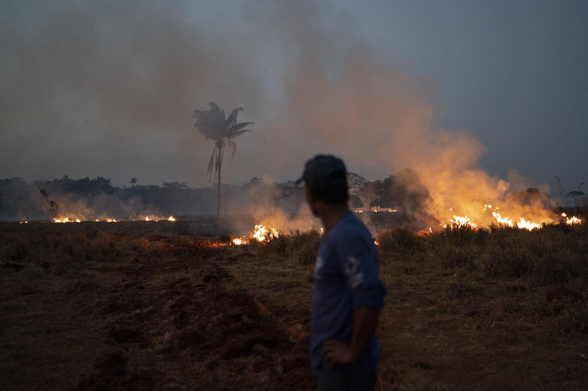 Bild zu Waldbrände am Amazonas