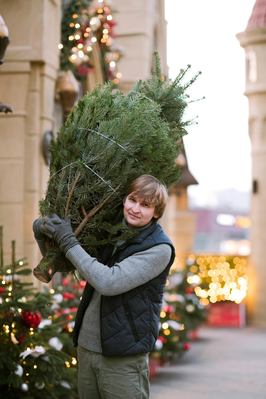 Bild zu Mann, Weihnachtsbaum