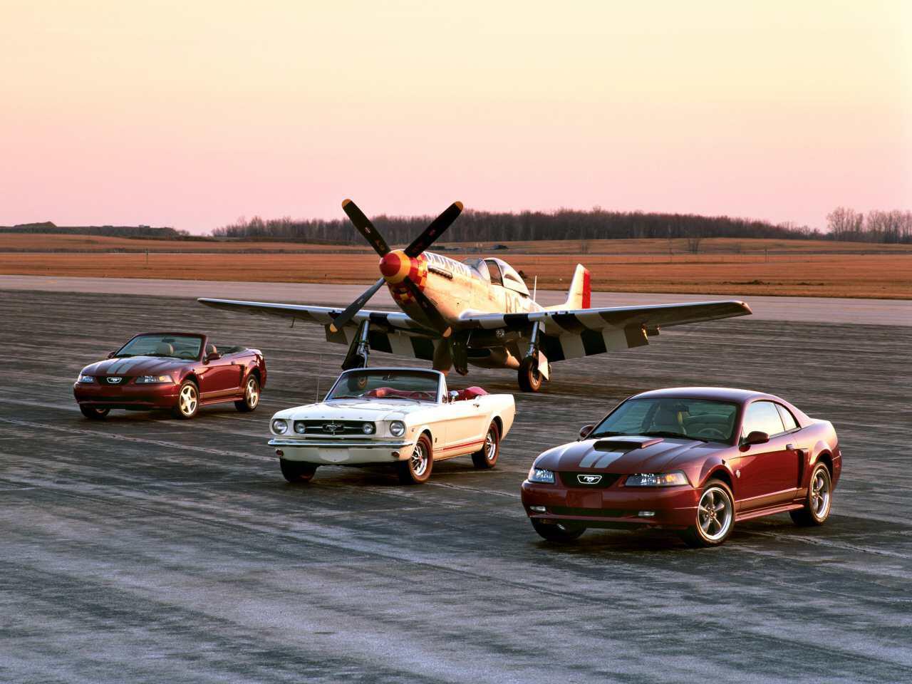 """Bild zu P51 """"Mustang"""""""