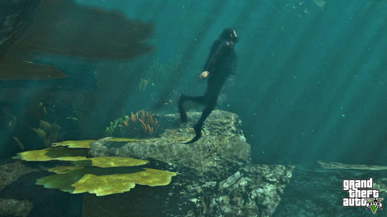 Bild zu Fantastische Unterwasserwelt