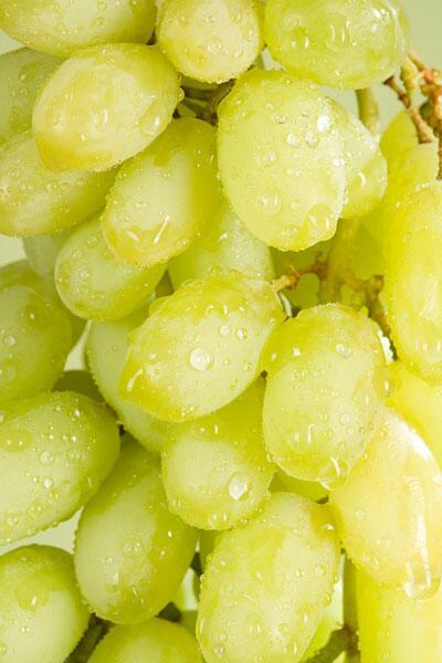 Bild zu grüne Trauben