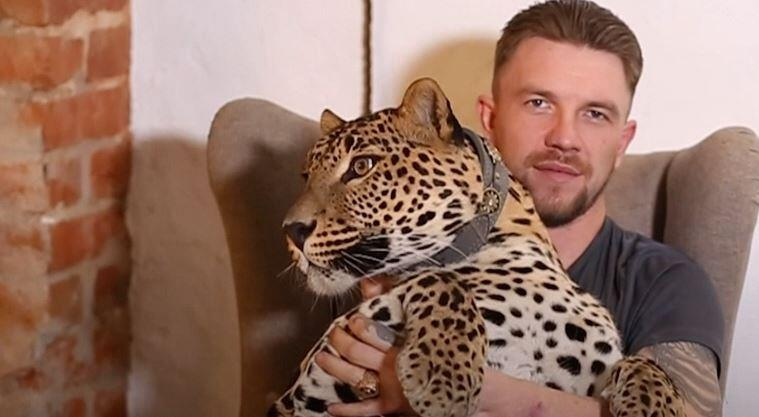 Bild zu Leopard