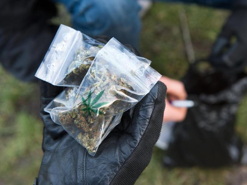 Bild zu Marihuana