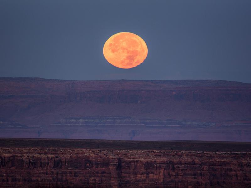 Bild zu In der Wüste Utahs