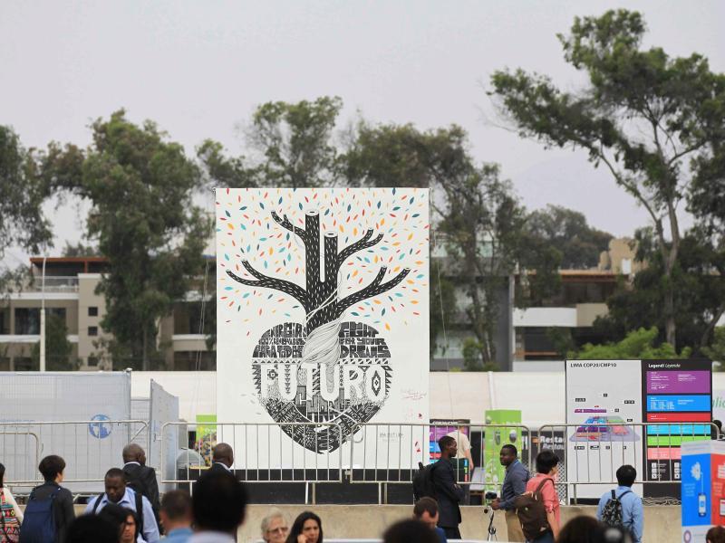 Bild zu Klimakonferenz in Lima
