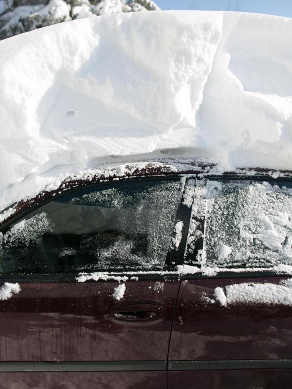 Bild zu Im Schnee begraben