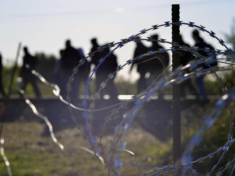 Bild zu Flüchtlinge an der serbisch-ungarischen Grenze