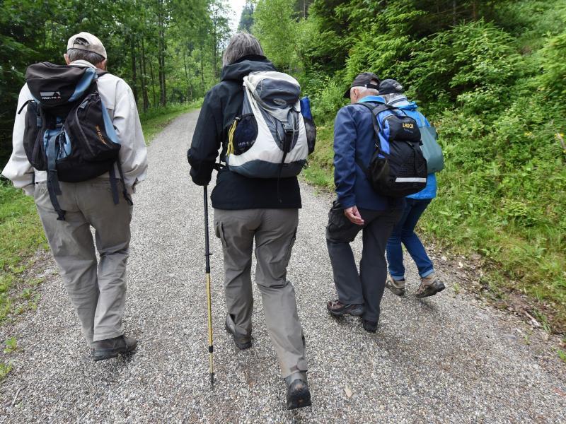 Bild zu Wanderer