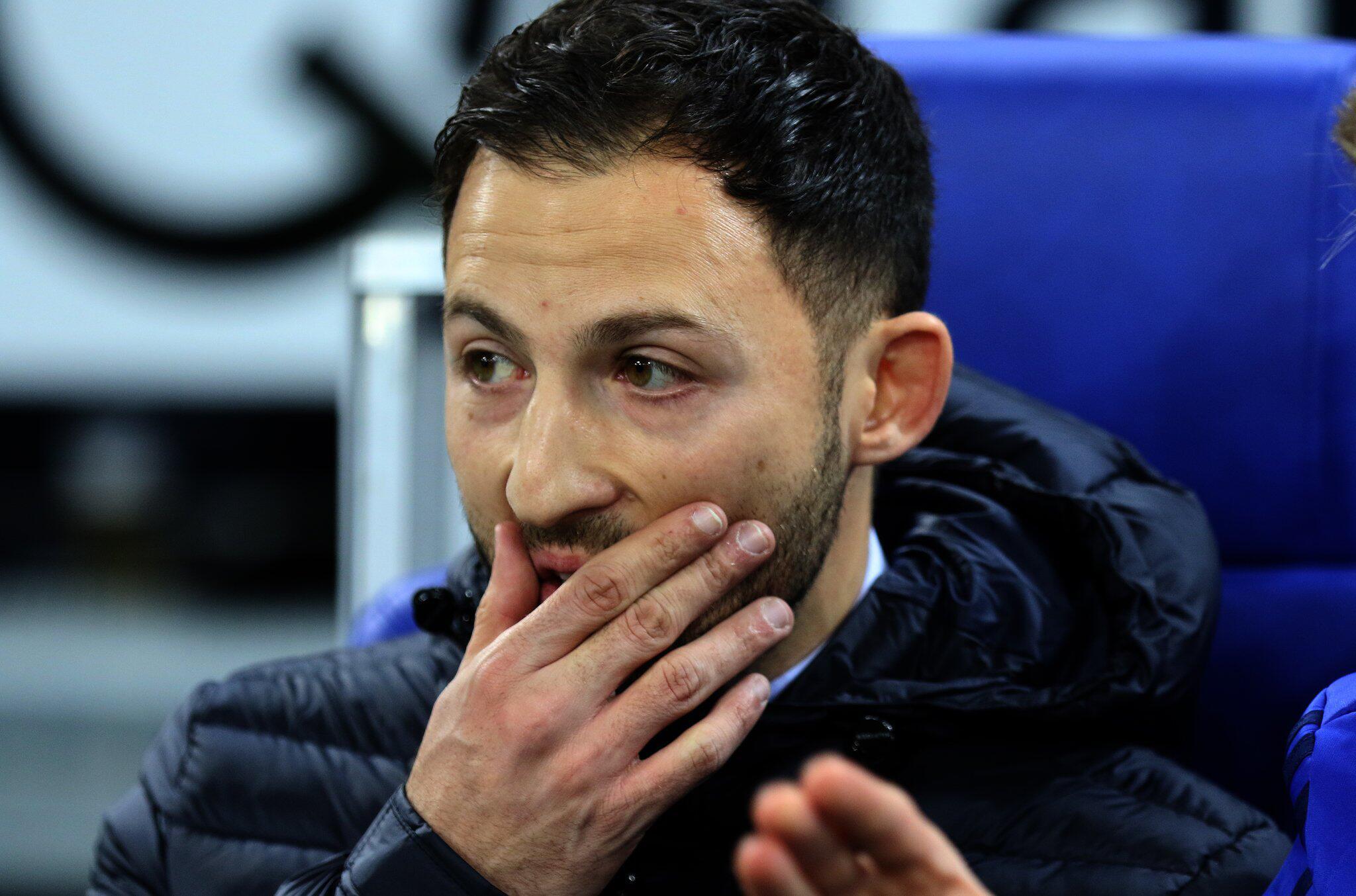 Bild zu FC Schalke 04 - Domenico Tedesco