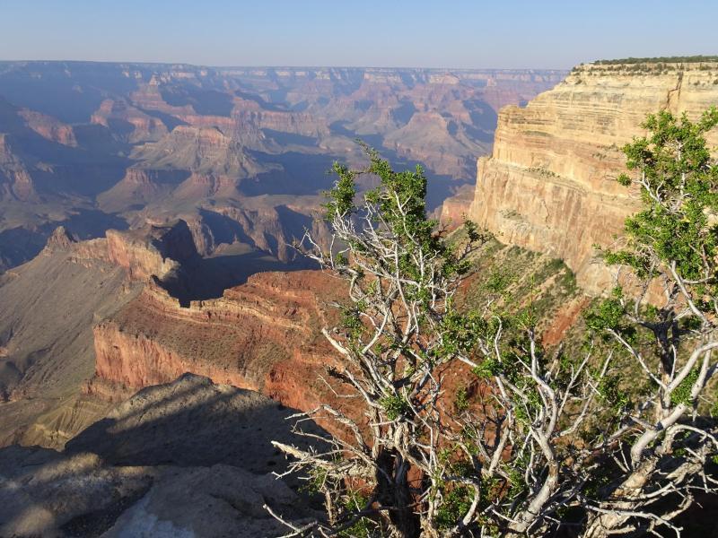 Bild zu Grand-Canyon-Nationalpark