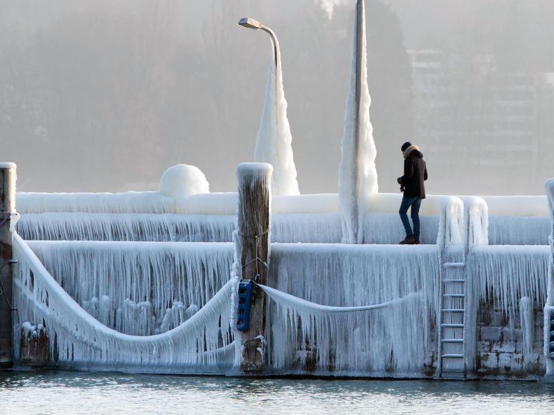 Bild zu Eispanzer am Bodensee