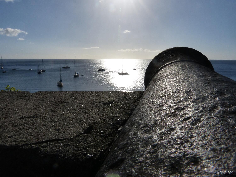 Bild zu Kanonen Hafen Saint Pierre
