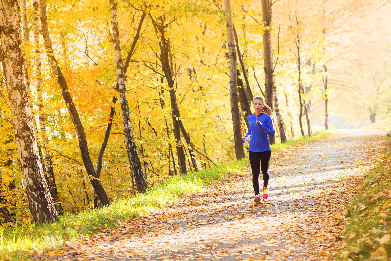 Bild zu workout, zuhause, sport, abnehmen, muskelaufbau, theraband, kettlebell, gewichte, training