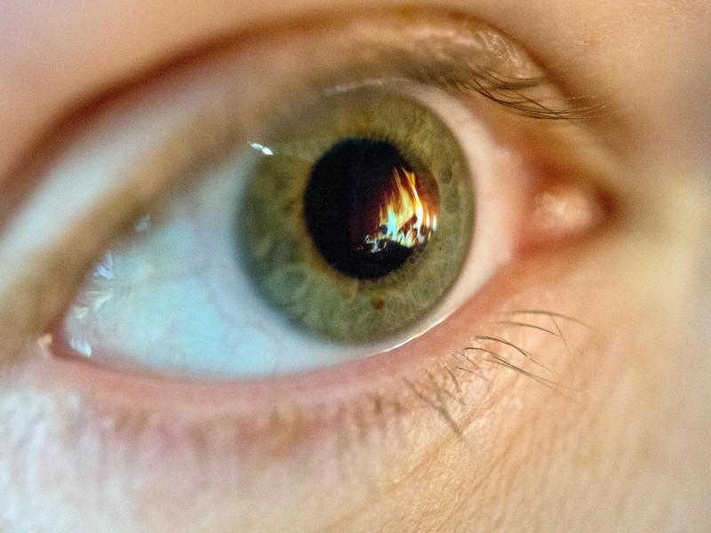 Bild zu Leidenschaft in den Augen