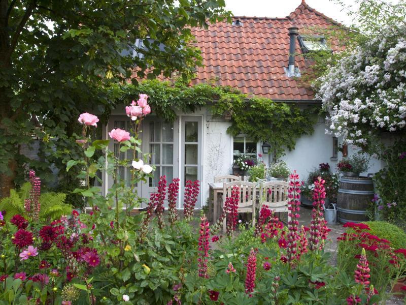 Bild zu Farbharmonie im Blumenbeet