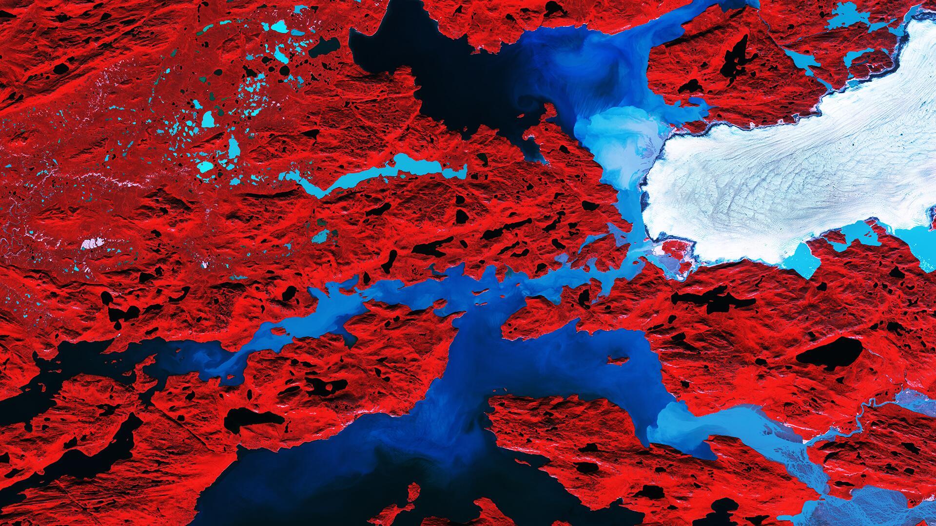 Bild zu Nordenskiold-Gletscher