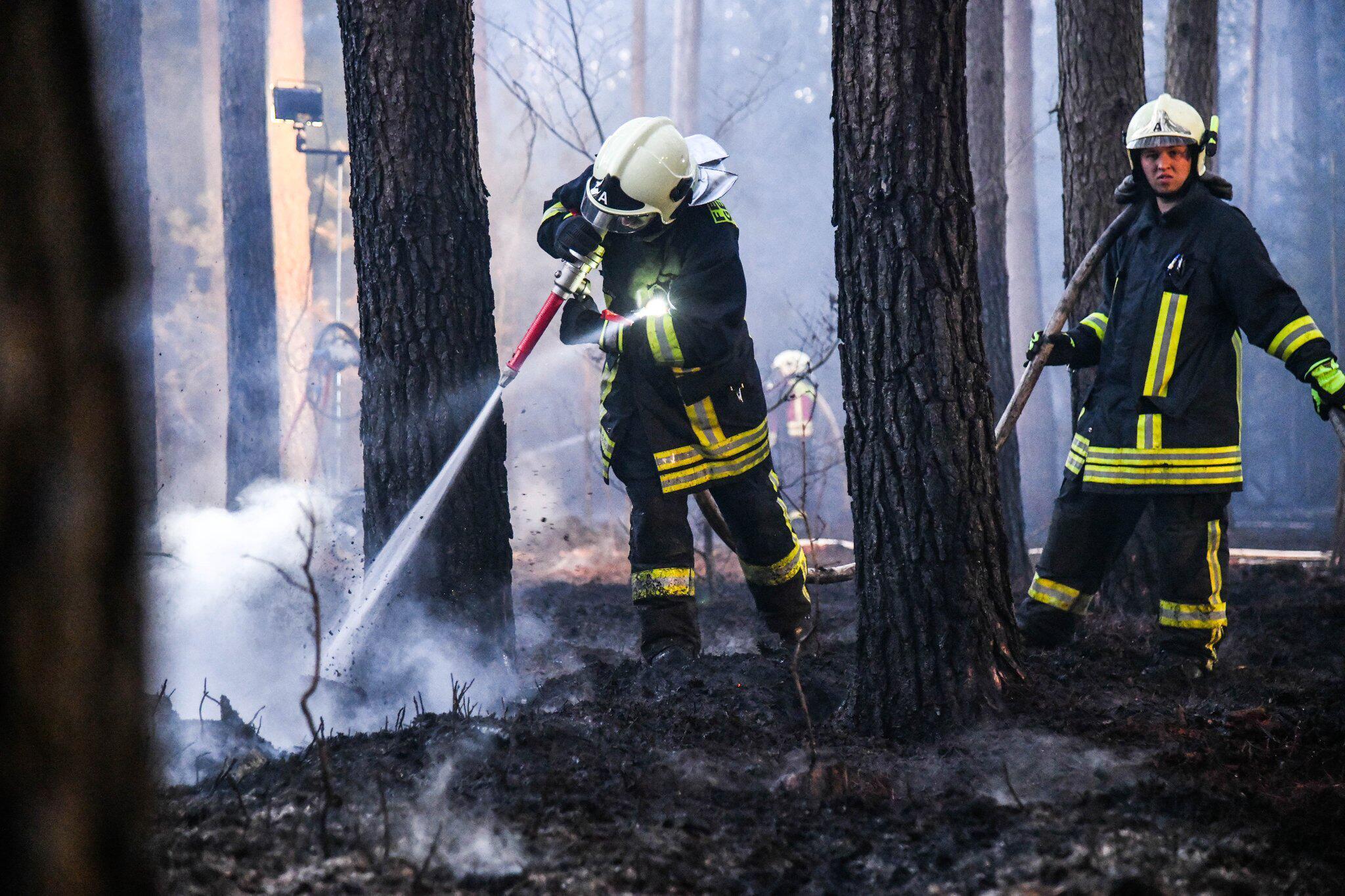 Bild zu Waldbrand bei Oranienburg