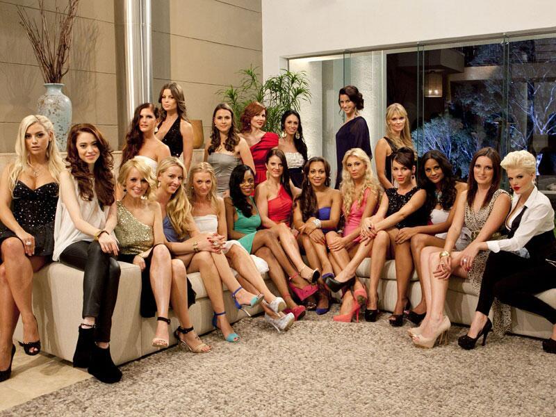 Bild zu Die Kandidatinnen