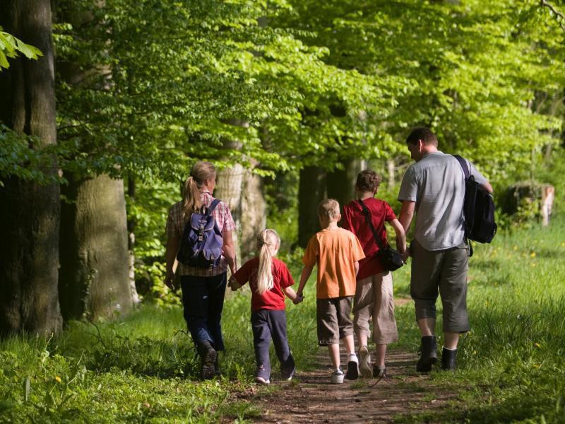 Bild zu Familien-Wanderung