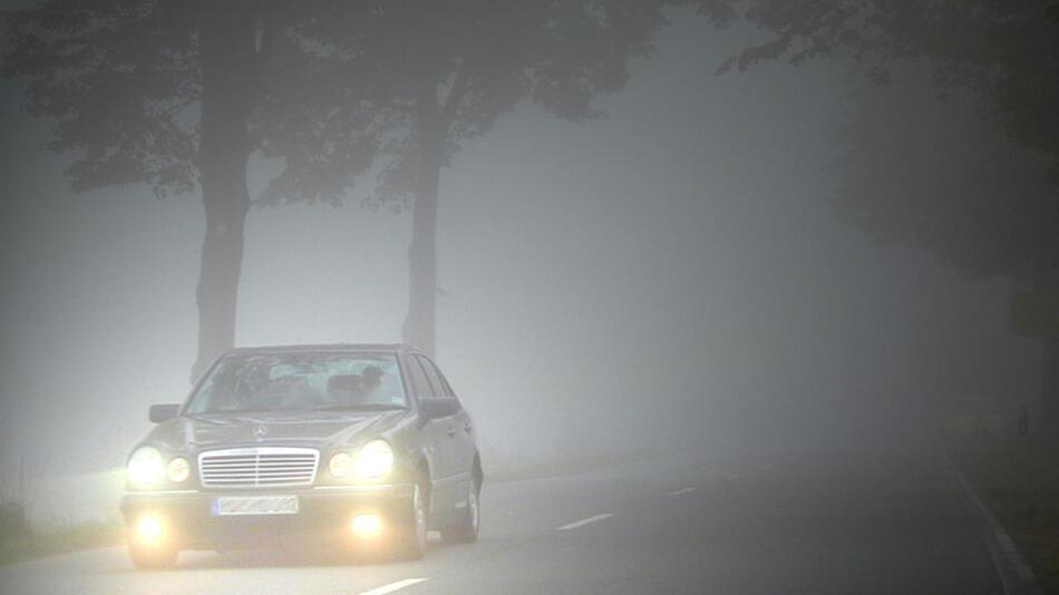 Autofahren im Herbst: So bereiten Sie Ihr Fahrzeug richtig vor