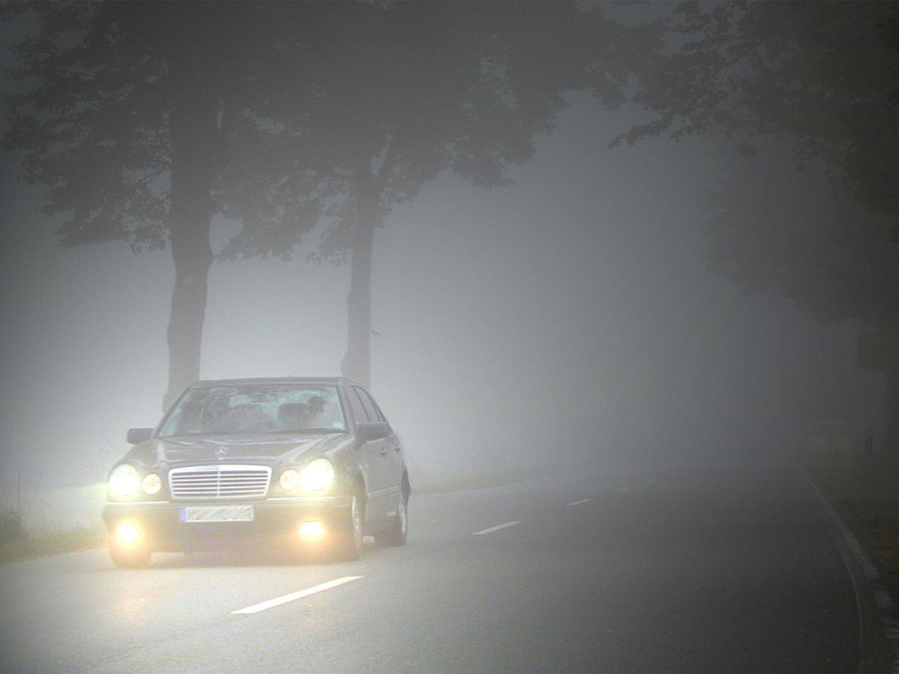 Bild zu Autofahren im Herbst: So bereiten Sie Ihr Fahrzeug richtig vor